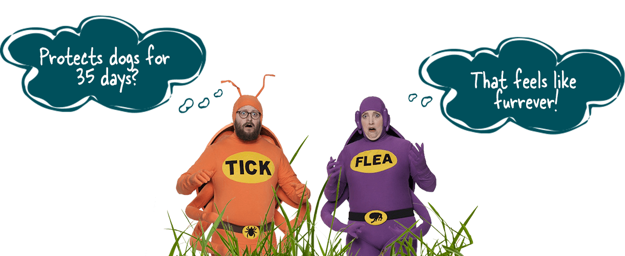 Simparica Tick and Flea characters