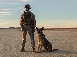 K-9 Courage