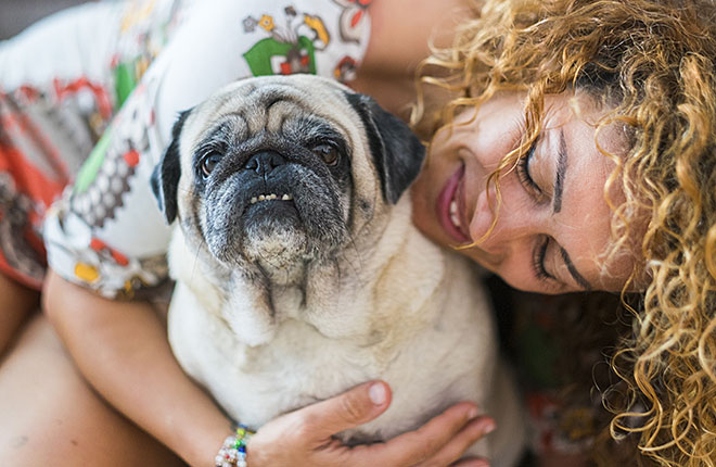 What to Know When Adopting a Senior Pet