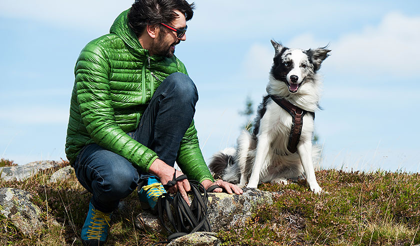 Avoiding ticks while hiking with your dog