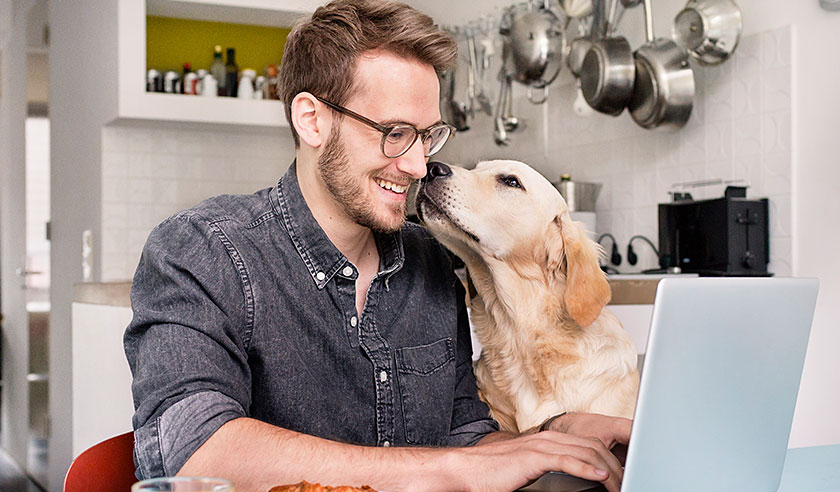 Dog nuzzling man at computer