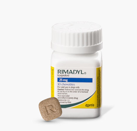 Rimadyl bottle with single dose
