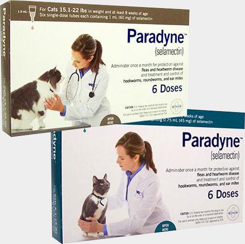 paradyne-product